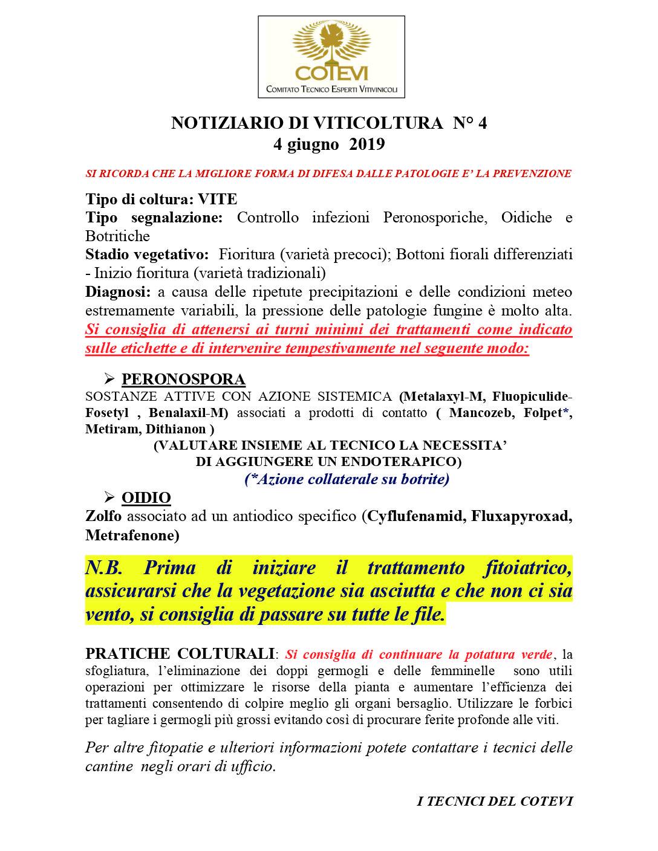 IV NOTIZIARIO 2019 COTEVI